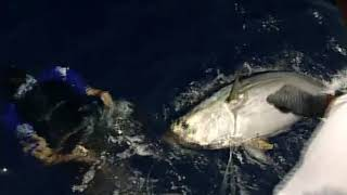 Yellowfin with Inside Sportfishing